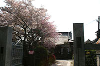 201004_12s.jpg