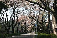 201004_13s.jpg