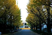 2010112201.jpg