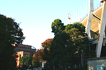 2010112205.jpg