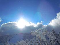 2011010306.jpg