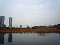 2011020704.jpg