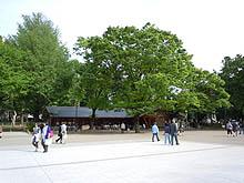 2012051303.jpg