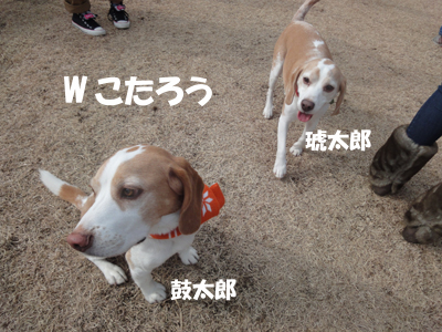 DSC07709_1.jpg