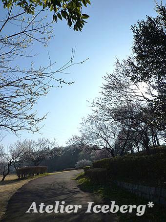 2013_16.jpg