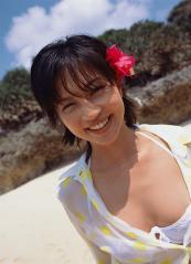 安田美沙子のビキニからニプレスがはみ出している画像