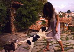 吉高由里子の股間を犬が責める画像