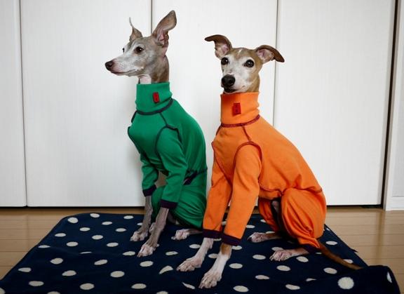 トトとディオ、同じサイズの服を着ているので、トトにはちょっとピチピチ~。。