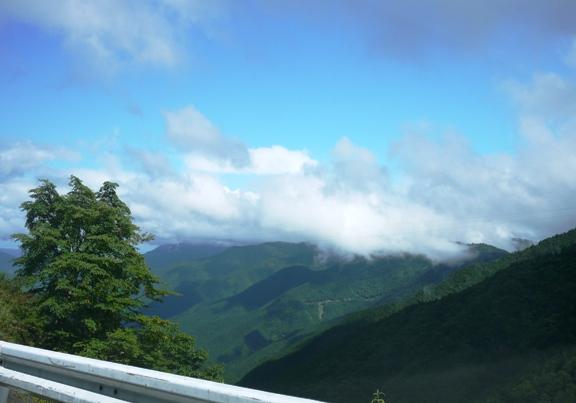 次回は山頂からこの景色が見れますよーに!