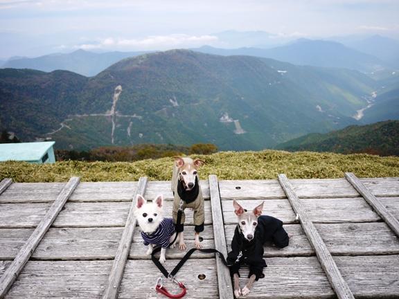 13時32分。さすがに頂上は寒くて、TDCはガタガタ震えてました・苦笑