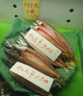 トト達にも、こうやって ひらいて干した魚をあげてみよう