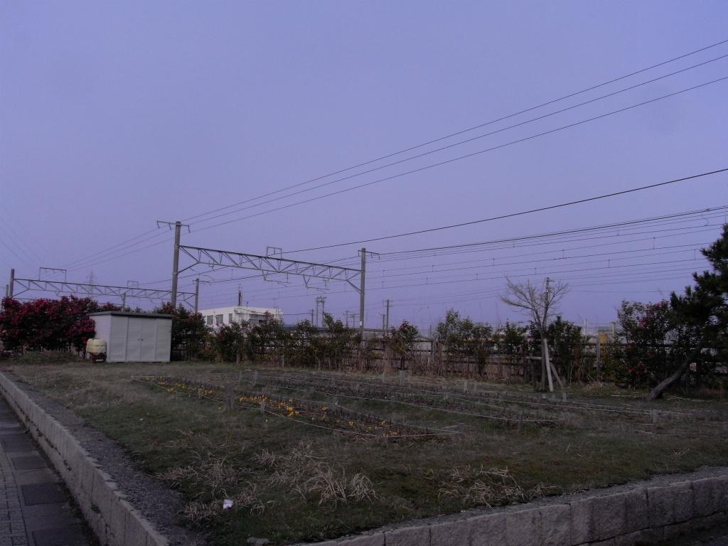 R0012130.jpg