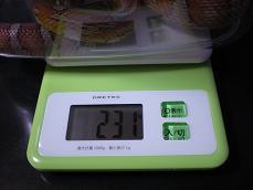 2012 12 6 体重