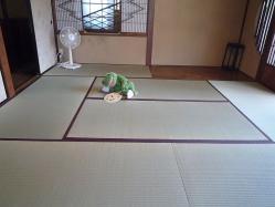 20120909tatami6.jpg