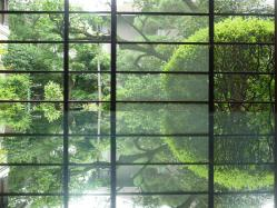 glass-garden.jpg