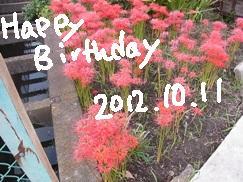 1011_20121011201215.jpg