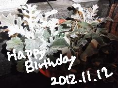 1112_20121112203900.jpg