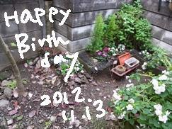 1113_20121113204735.jpg