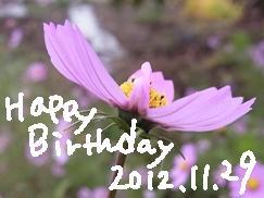 1129_20121129211241.jpg