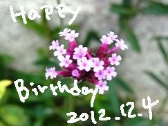 1204_20121204204732.jpg