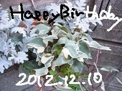 1210_20121210203832.jpg