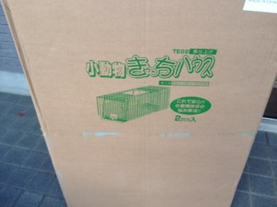 fc2blog_20121031145605c90.jpg