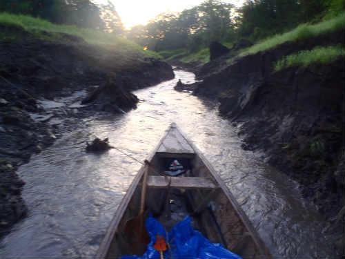 ペルー・アマゾン河(アマゾン川...