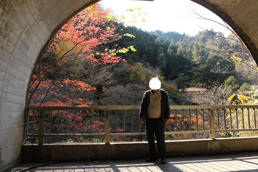 20121124袋田3