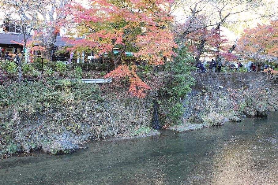 20121124袋田6