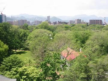 今日の北大植物園(2012年5月25日)