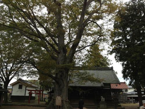 白鳥神社3