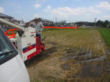 最後の稲刈り4