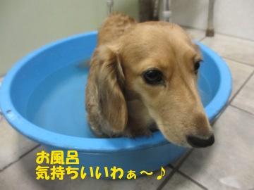 お風呂に浸かって