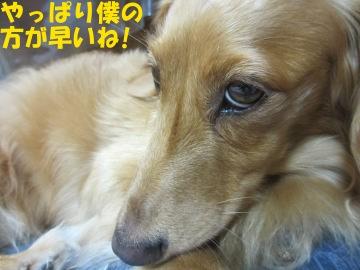 もみすり終了7