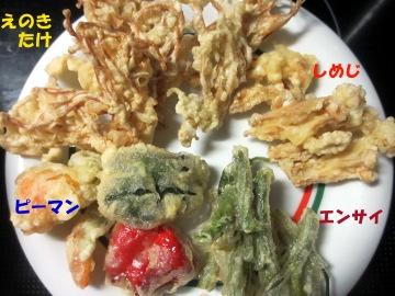 エノキ茸4