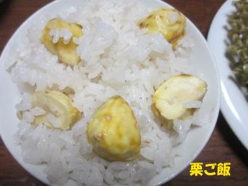 エノキ茸9