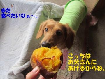 焼き芋が食べたい4