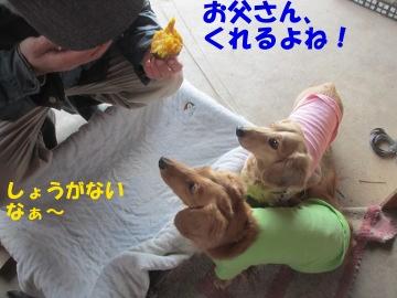 焼き芋が食べたい5