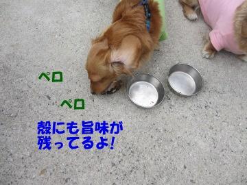 かき焼き10