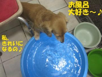 お風呂大好き~♪