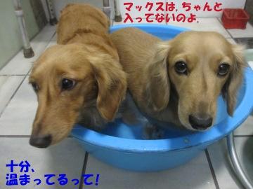お風呂大好き~♪7