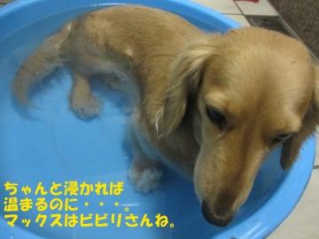 お風呂大好き~♪9