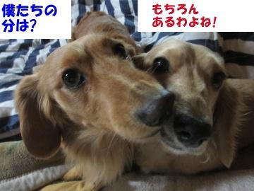瀬戸鉄工6