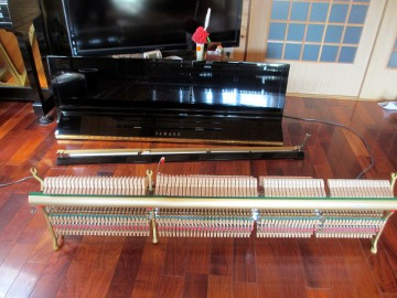 ピアノの調律3