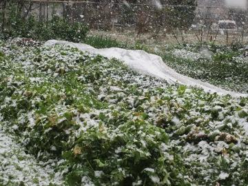 外は雪で3