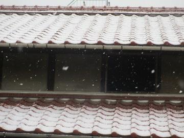 外は雪で4