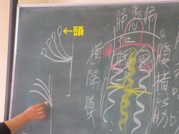気功教室2013-8