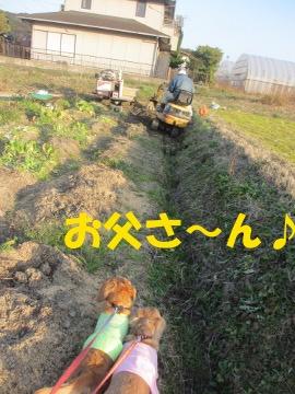 農園2月5