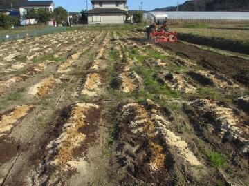農園準備25年度6