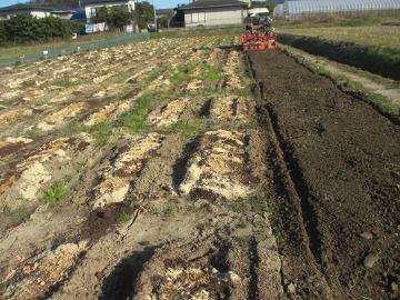 農園準備25年度7